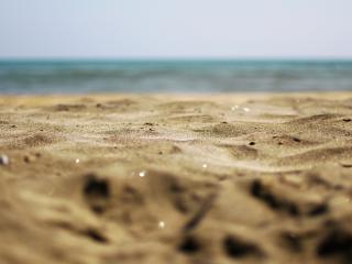 обои Пляж,   песок,   макросъемка фото