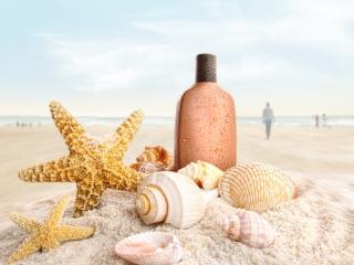 обои Пляж,   ракушки,   морские звезды и мокрая бутылочка на песке фото