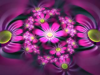 обои Розовая поляна цветoв в абстракции фото