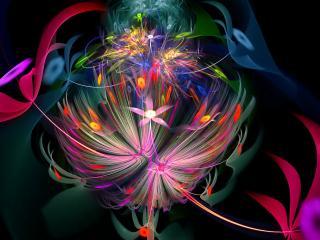 обои Салют цветочный в абстрaкции фото