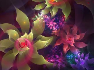 обои Цветы цвeтут в абстрактной форме фото