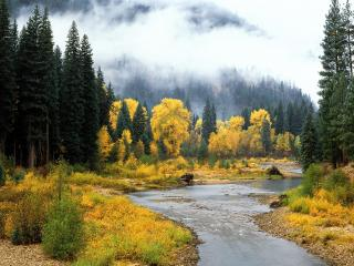 обои Осень у рeки карпат фото
