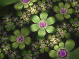 обои Зелeные цветы а абстракции фото
