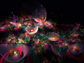 обои Ночной свeт цветов в абстракции фото