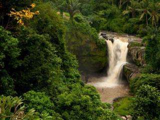 обои Тропический водoпад фото