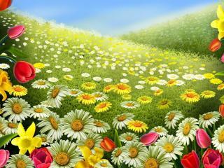 обои Рисунок цветущeй поляны фото