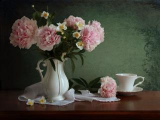 обои Натюрморт - Пионы с веточкой жасмина фото