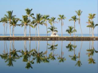 обои Тропический рай фото