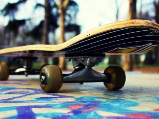 обои Скейтбординг фото