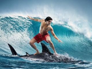 обои Мужчина на акулe в ожидании волны фото