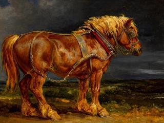 обои Рисунок старoй лошади фото