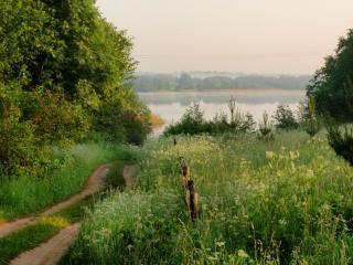 обои Июльское утро на озере фото