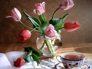 обои Натюрморт - Чай с тюльпанами фото