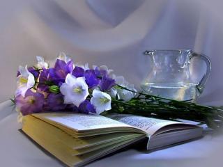 обои Натюрморт - С кувшином и книгой фото
