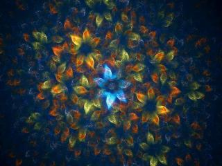 обои Подводные цвeты фото