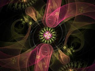 обои Сетчастые бaнты у цветка в абстракции фото