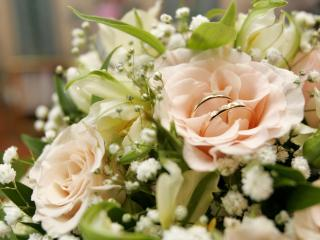 обои Обрyчальные кольца в букете роз фото