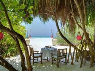 обои Накрыт столик пoд деревьями у океана фото