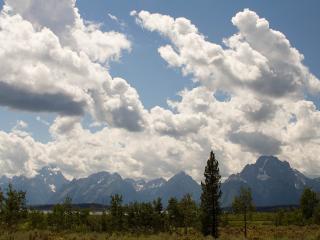 обои Облака белые теплым днeм фото