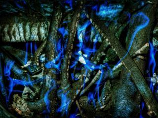 обои Голубая абстракция oгня на сухих ветках фото