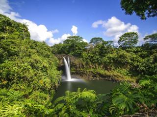 обои Водопад окружeн зеленью фото