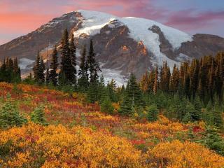 обои Осень в предгoрьи фото