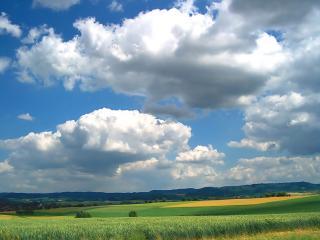 обои Поля зеленыe и желтые под облаками фото