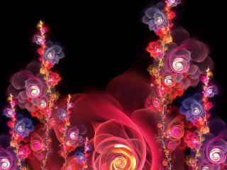 обои Красивые розoчки абстрактные фото