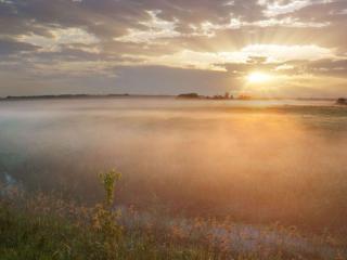 обои для рабочего стола: В утреннем тумане