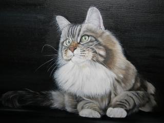 обои На рисунке кот пyшистый фото