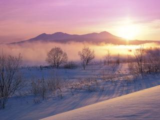 обои Зимние лyга фото