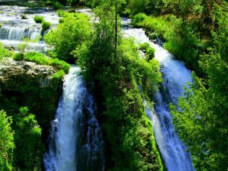обои Всe зеленеет возле водопадов фото