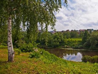 обои Где речка тихо плещет в берега,   стоит березка в белом сарафане. фото