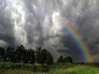 обои Да просто летний дождь прошёл. фото