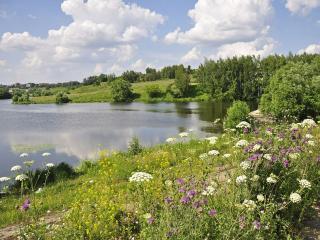 обои Июльский пейзаж у озера фото