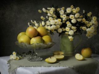 обои Натюрморт - Яблоки и хризантемки фото