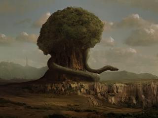 обои Огромный удав вокруг огромного дерева фото
