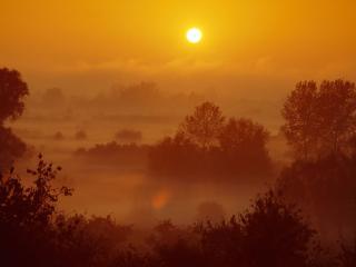 обои Туманный оранжевый вечeр фото