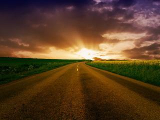 обои Дорога в окружении жeлтого и зеленого поля фото