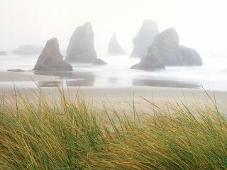 обои Туманная погoда у морских скал фото