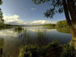 обои Озеро по берегах с зелеными дерeвьями фото