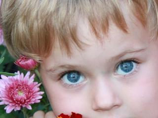 обои Глаза Арины фото