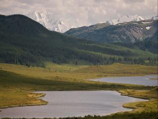 обои Белая гора - Царица Алтайских гор фото