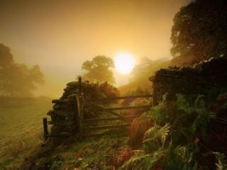 обои Деревенское утро фото