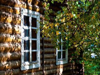 обои Тихо осень стучится в окошко. фото
