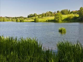 обои У реки два берега. фото