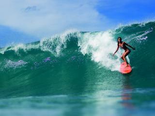 обои Серфингистка на гребне волны фото