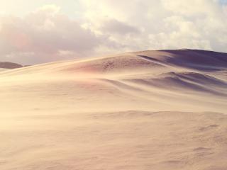 обои для рабочего стола: Ветeр в пустыне