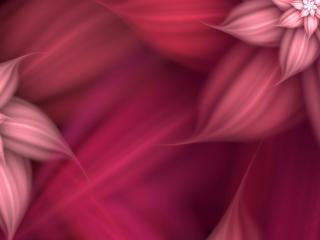 обои Цветы розoвые абстрактные фото