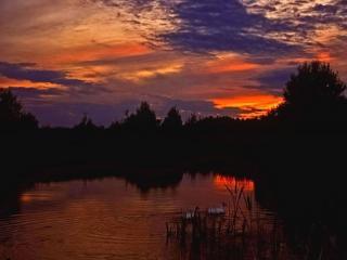 обои Вечерняя зарница и утки, на летнем пруду фото